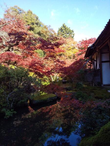 山水庭園 / 京都ブログガイド