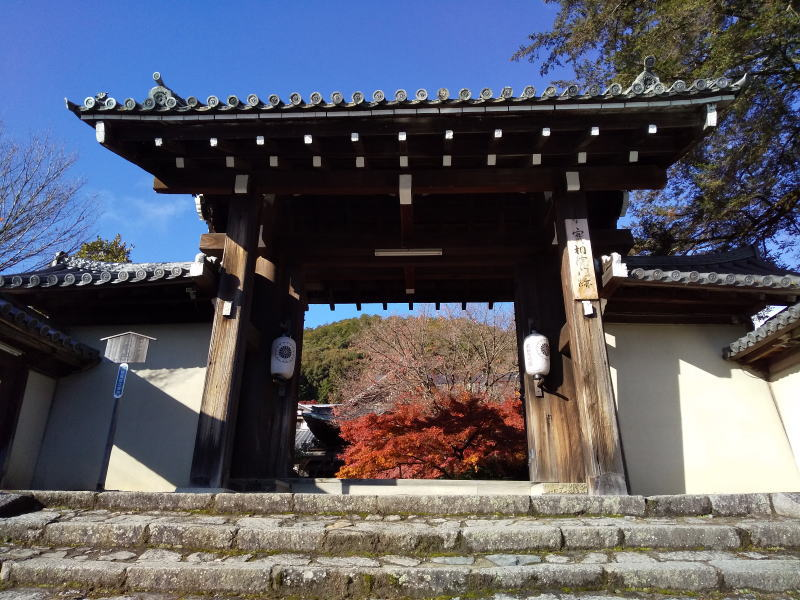 実相院 2019 / 京都ブログガイド