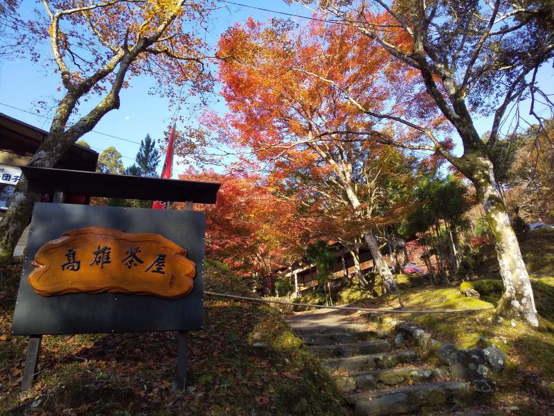 高雄茶屋 / 京都 ブログ ガイド