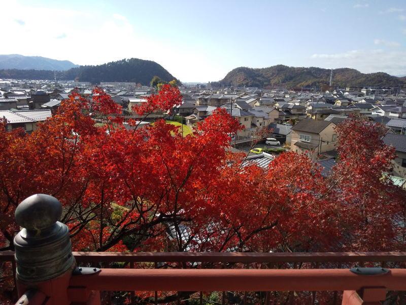 洛北の眺め / 京都 ブログ ガイド