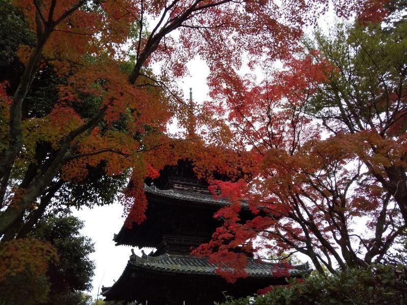 三重塔 / 京都 ブログ ガイド
