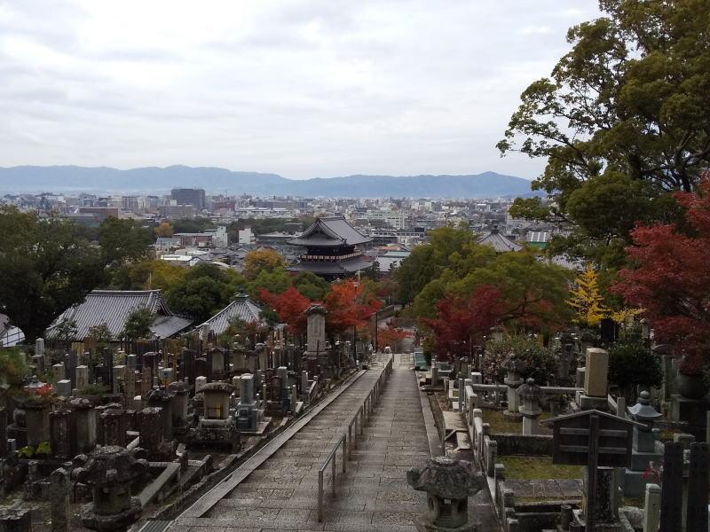 三重塔から京都市内を望む / 京都 ブログ ガイド