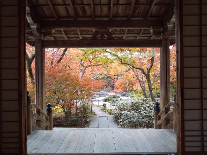 本堂からの紅葉 / 京都 ブログ ガイド