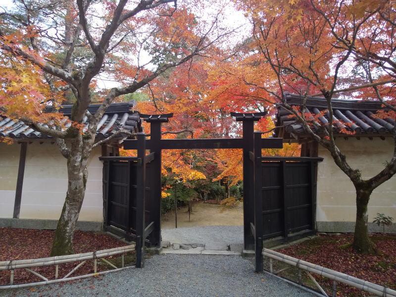 二尊院 2019 / 京都 ブログ ガイド