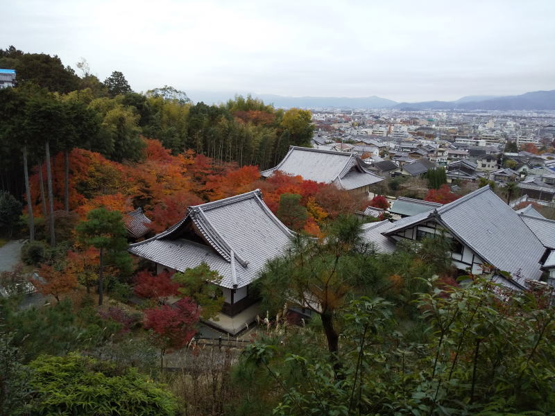 圓光寺 2019 / 京都 ブログ ガイド