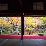 圓光寺2019 / 京都 ブログ ガイド