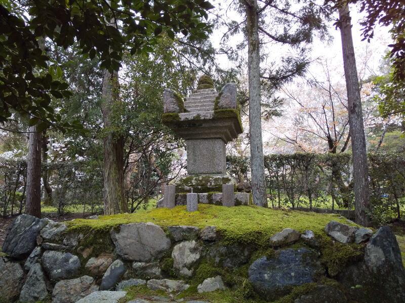清凉寺 桜 2020 / 京都 ブログ ガイド