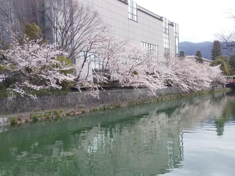 京都国立近代美術館 / 京都 ブログ ガイド