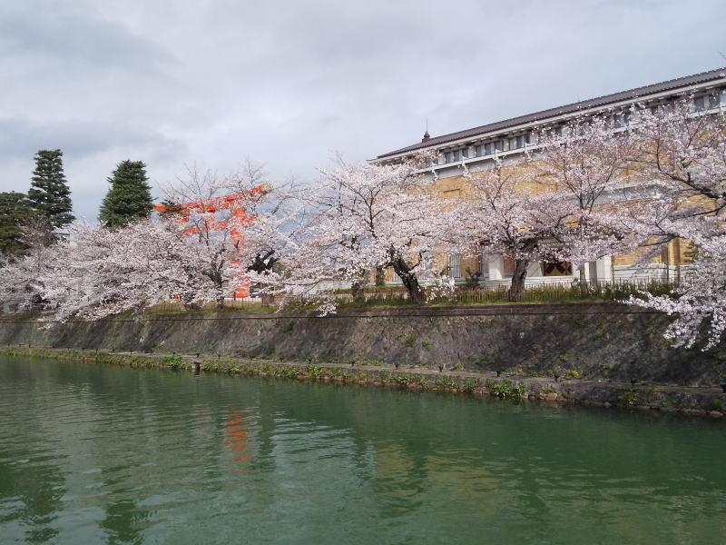京都市京セラ美術館 / 京都 ブログ ガイド