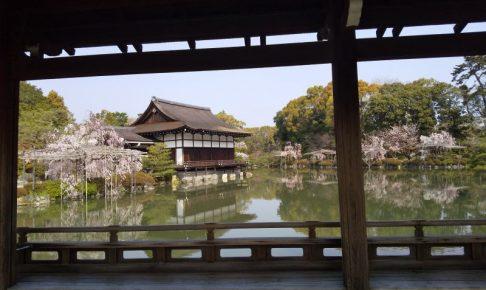 平安神宮 桜 2020 / 京都 ブログ ガイド