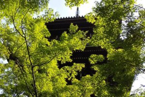 2020年7月 京都イベント情報 / 京都 ブログ ガイド