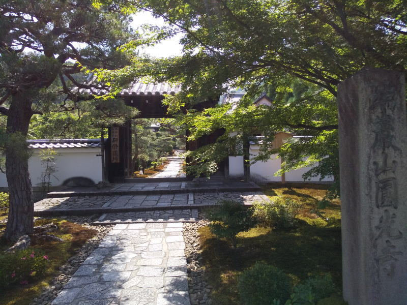 圓光寺 青紅葉 2020 / 京都 ブログ ガイド