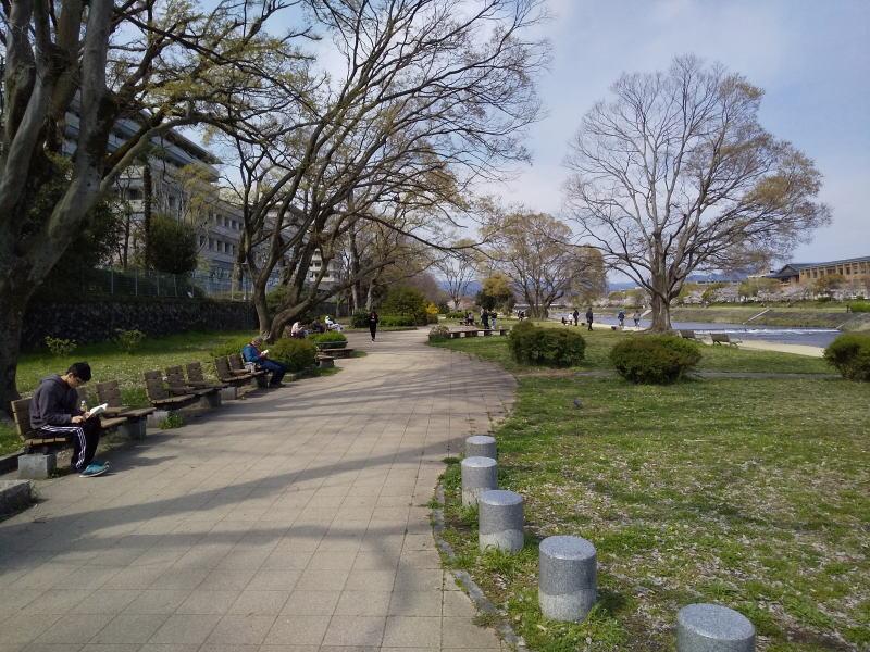 賀茂川と鴨川 / 京都 ブログ ガイド