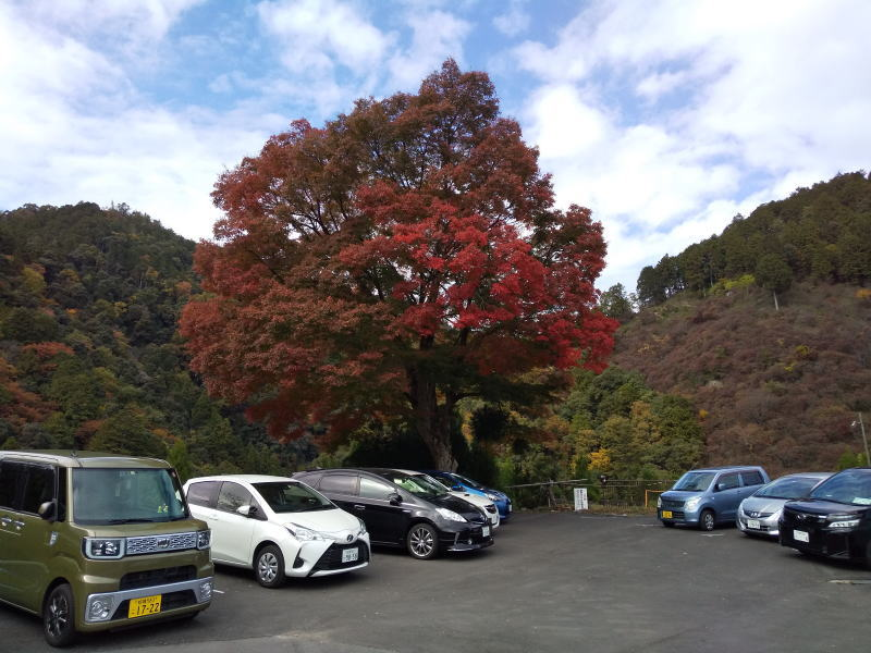 神護寺 2020 / 京都ブログガイド