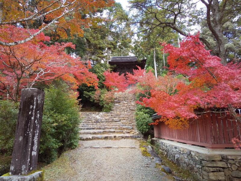 神護寺鐘楼 / 京都ブログガイド