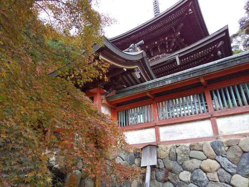 神護寺多宝塔 / 京都ブログガイド