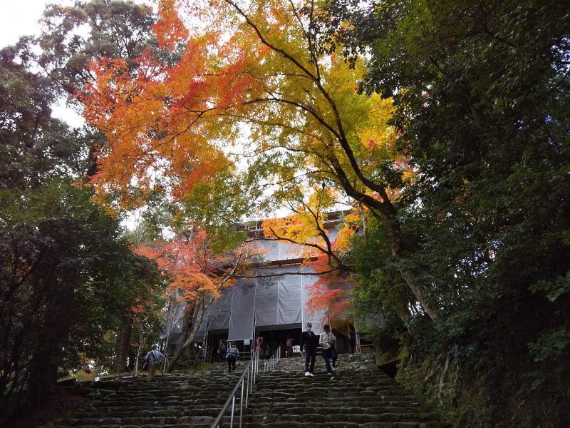 神護寺楼門 / 京都ブログガイド