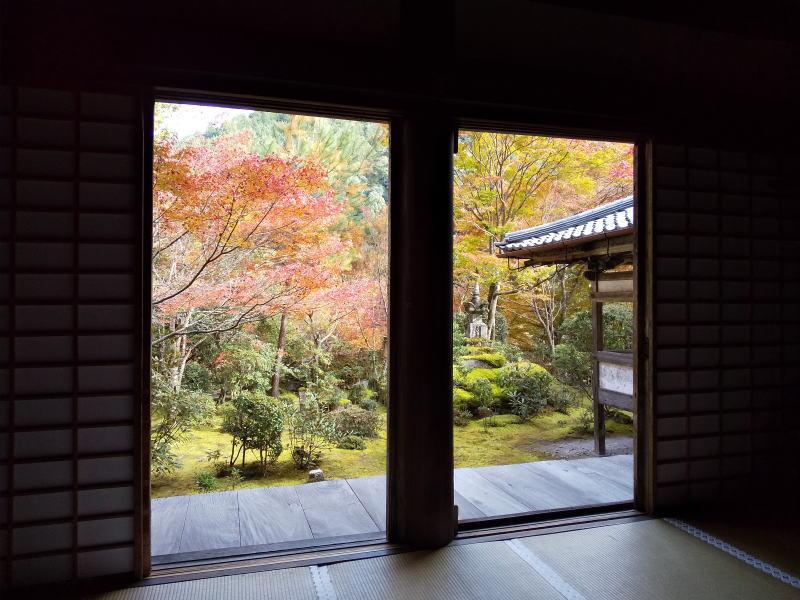 本堂から庭を望む / 京都ブログガイド