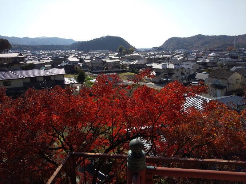 洛北の風景 / 京都ブログガイド