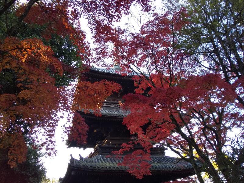 三重塔 / 京都ブログガイド