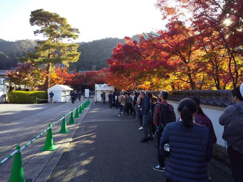 拝観前の列 / 京都ブログガイド