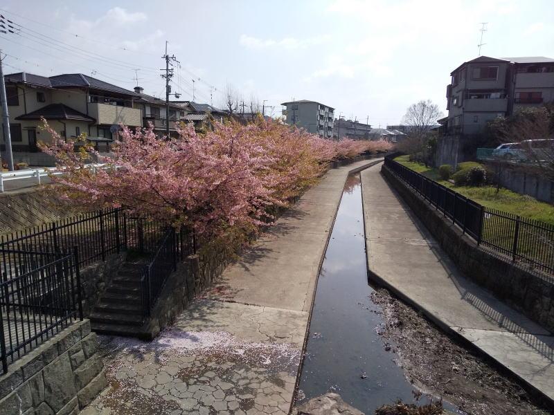 淀緑地西詰 / 京都ブログガイド