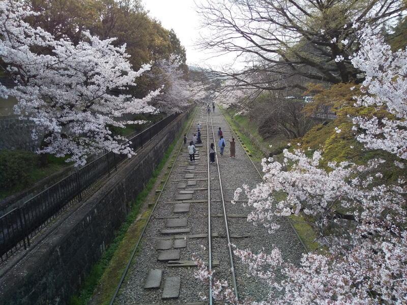 インクライン 2021 / 京都ブログガイド