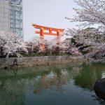京都 岡崎疎水 2021 / 京都ブログガイド