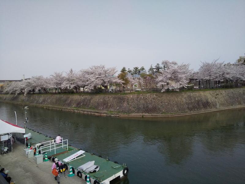 動物園と十石舟乗り場 2021 / 京都ブログガイド