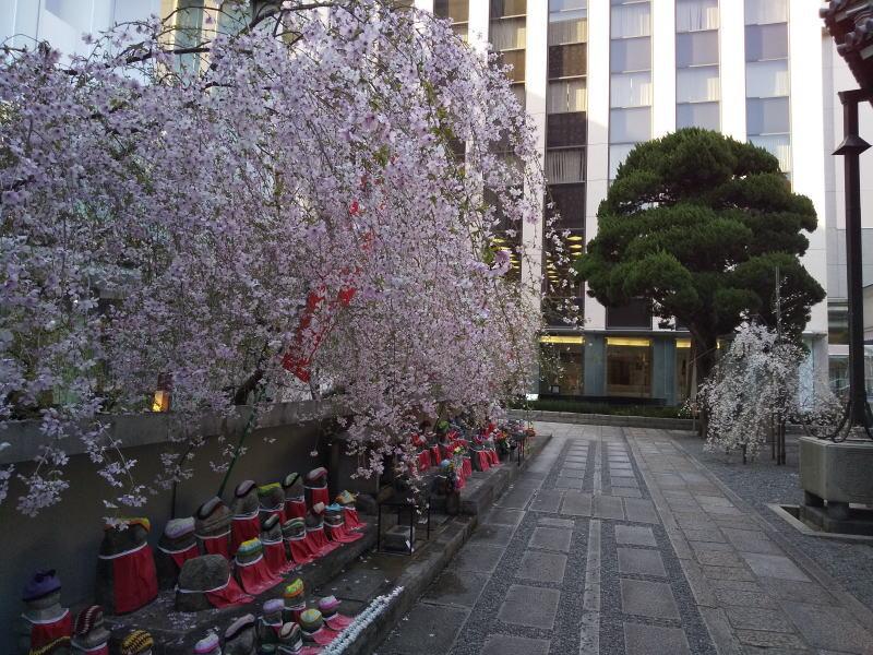 六角堂 2021 / 京都ブログガイド