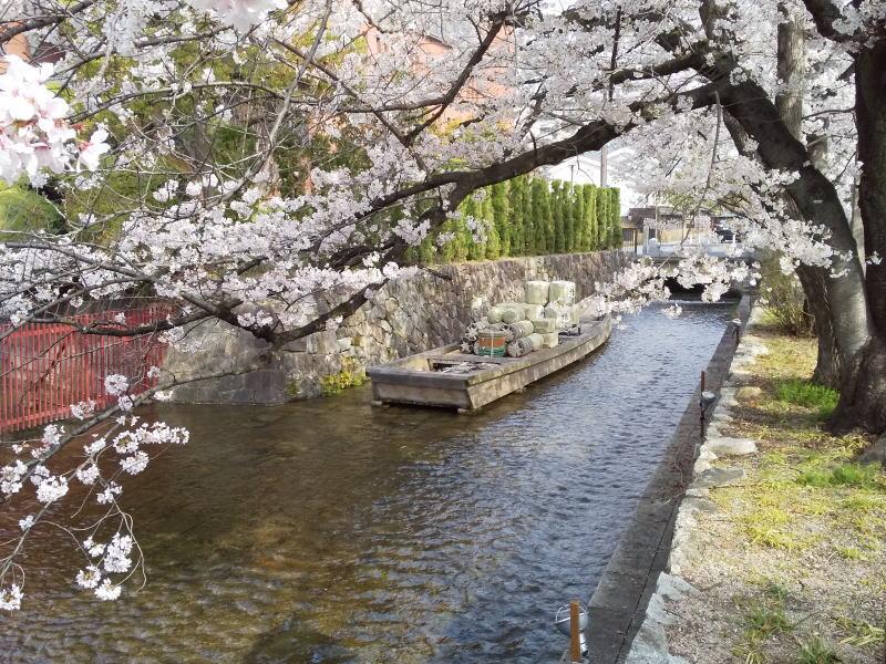 一の舟入 / 京都ブログガイド