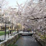 木屋町 2021 / 京都ブログガイド