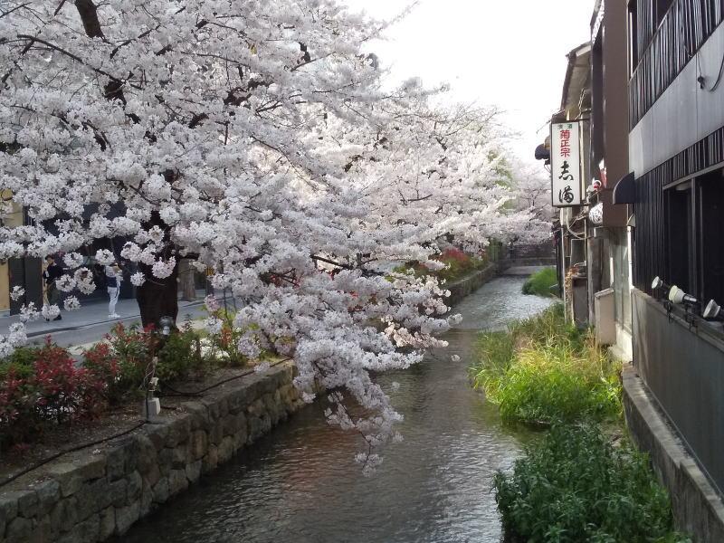 木屋町通 2021 / 京都ブログガイド