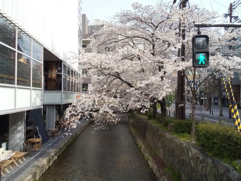 木屋町三条 / 京都ブログガイド