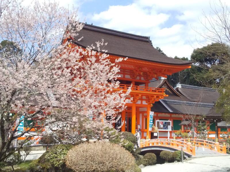上賀茂神社 2021 / 京都ブログガイド