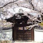 妙顕寺 2021 / 京都ブログガイド