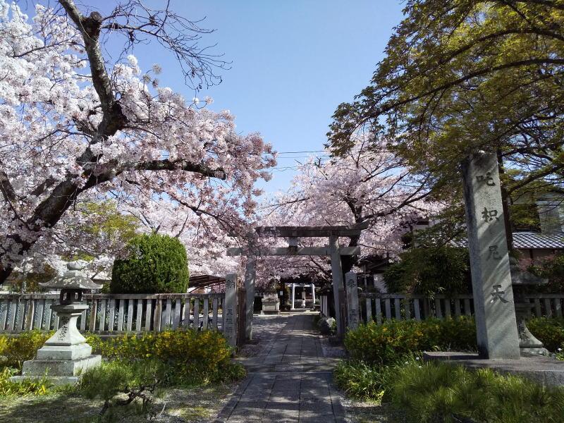 吒枳尼天 ( だきにてん ) / 京都ブログガイド