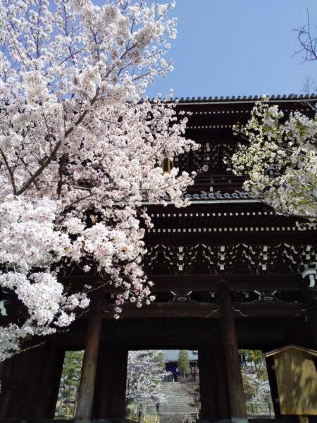 金戒光明寺山門 / 京都ブログガイド