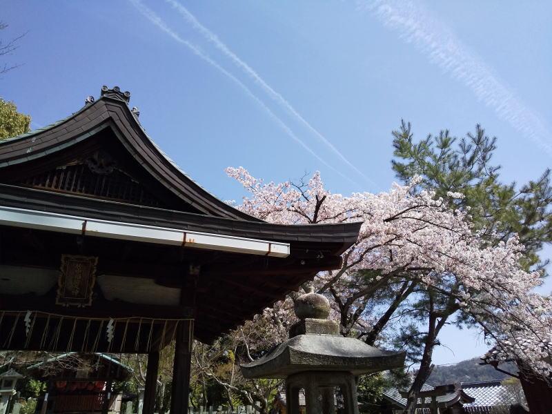 竹中稲荷社拝殿 / 京都ブログガイド